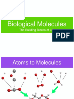 Ch3 BioMolecules Notes