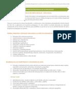 11530570587Temario-EBR-Nivel-Inicial.pdf
