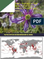 Conservación y valorización flora nativa Charla Escuela GB.pdf