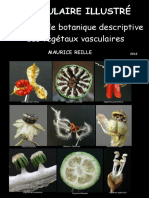 Vocabulaire-Illustre.pdf
