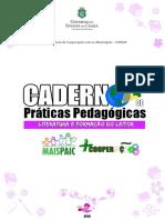 caderno_leitor.pdf