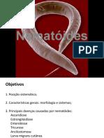 Nematoides_2012