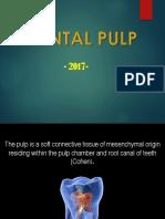 Pulpa.pptx