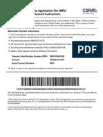 Visa Payment Instructions