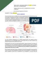 Embriologia cara y cuello 1.docx