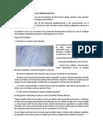 ETAPAS DEL GARABATEO EN LA PRIMERA INFANCIA.docx