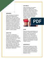 ROXANA DICCIONARIO.docx