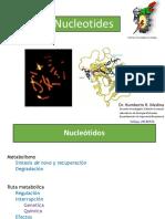 1Nucleótidos.pptx