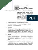 demanda liquidacion.docx