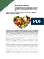 METABOLISMO DE LOS NUTRIENTES.docx
