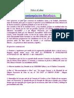 CONTEMPLACION METAFISICA.doc