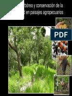 Modulo 1_Importancia Cobertura Arbórea