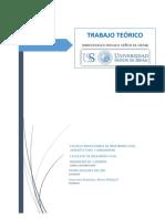 Guerrero-ESTUDIO DE IMPACTO VIAL (1).docx