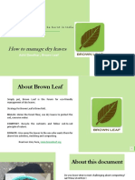 How to Manage Dry Leaves