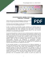 Psp Laboral en escuelas.pdf