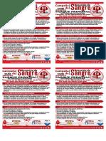 volante de campaña - TAME 14 dic.pdf