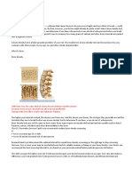 Bone Density Test