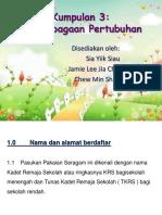 K 3 - Perlembangaan Pertubuhan.pptx