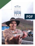 Reporte-de-Sostenibilidad-2016.pdf