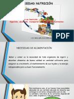 NECESIDAD-DE-NUTRICIÓN-1-2-Y-3-SEMANA (1).pptx