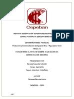 COMPLETO--Proyecto Produccion y Comercializacion de Agua de Mesa--CEPEBAN.docx