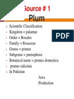 12-3 Plum.pptx