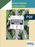 Modulo 3_Teoría PSA y Valoracion económica.pdf