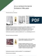 Tema01 - Anatomia de La Cavidad Pulpar