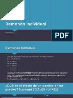 Demanda individual deapositivas.