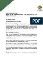 GUIA_ACTOS PROCESALES_NULIDDS 2019.docx