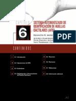 afis.pdf