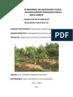 PRODUCCIÓN DE PALTO.docx