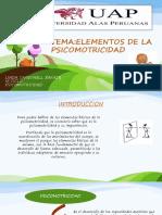 Elementos de La Picomotricidad