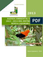 4.AGENDA AMBIENTAL LOCAL_NUEVA CAJAMARCA.pdf