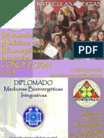 DOMOKIMUNdiplomado.2019.pdf