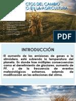 AGRICULTURA (1)