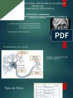 FISIOLOGIA DOLOR.pdf