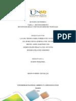 BOTANICA ECONIMICA GRUPO 201710A_611  final.docx