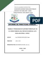 INFORME DE PRACTICAS FINALES 2018 - JOSE LUIS PEKOS.docx