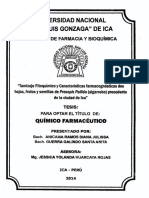 algarrobo caracterización.pdf