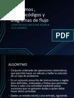 algoritmos, pseudocodigo y diagramas de flujo