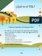Presentacion TEL.pptx