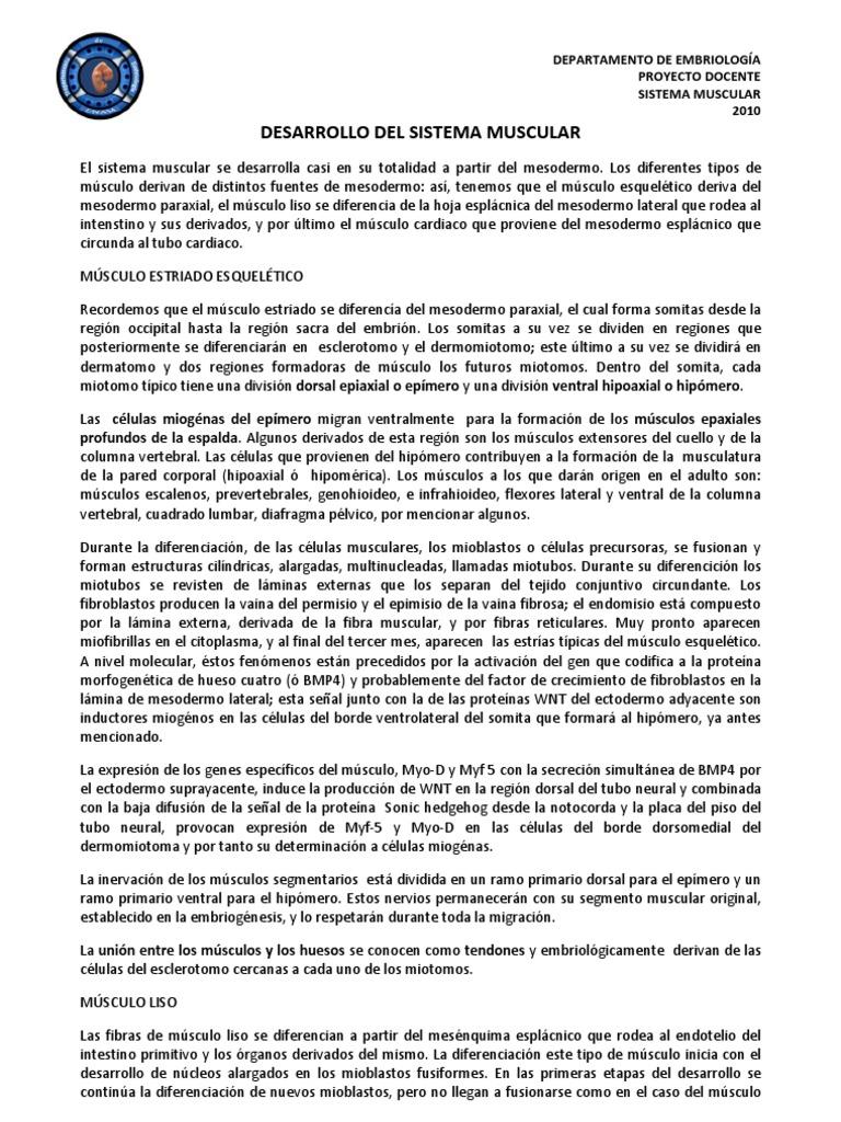Contemporáneo Hojas De Trabajo Básicas De División Cresta - hojas ...