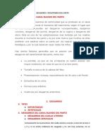 DESGARROS Y EPISIOTOMÍA EN EL PARTO.docx