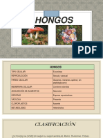HONGOS.pptx