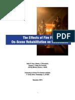 TheEffectsFire FightingOn-SceneRehabilitationHemostasis