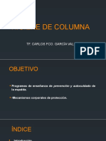 1544540679431_HIGIENE DE COLUMNA.pptx