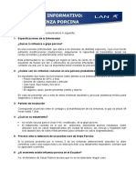 Boletin Informativo Influenza Porcina # 1