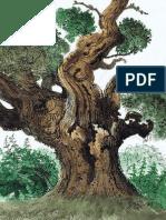 David Gentleman Tree