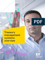 EY-treasury-management-systems-overview.pdf